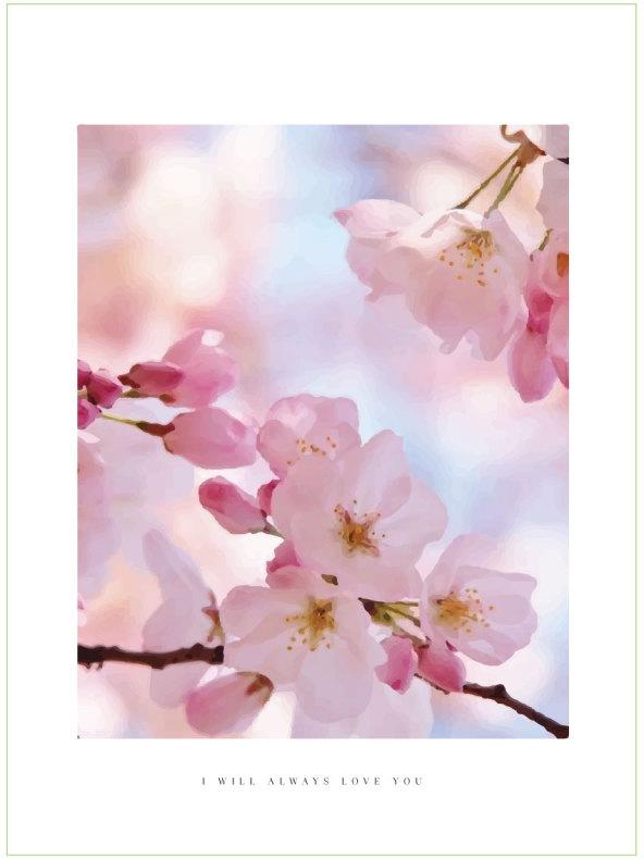 CHERRY BLOOM FLOWER ARTPRINT